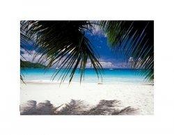 Seychelles - biała piaszczysta plaża - reprodukcja