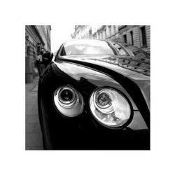 Bentley - reprodukcja