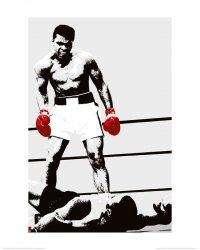 Muhammad Ali (Rękawice) - reprodukcja