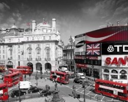 London Piccadilly Circus - plakat