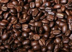 Fototapeta do kuchni - Świeże ziarna kawy - 254x183 cm