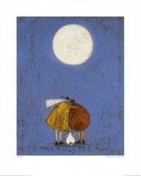 Obserwacja księżyca - reprodukcja