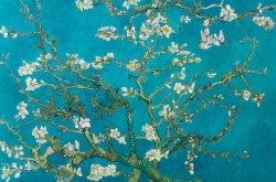 Van Gogh - Migdałowy Kwiat - plakat