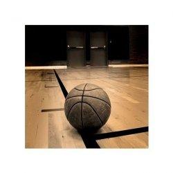 Koszykówka - reprodukcja