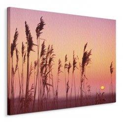 Fenland Sunrise - Obraz na płótnie