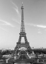 Fototapeta na ścianę - Paryż, Wieża Eiffel - 183x254cm