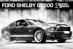 Ford Shelby Gt500 Supersnake - plakat