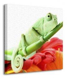 Kameleon na kwiatku - Obraz na płótnie