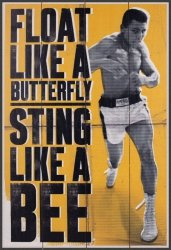 Muhammad Ali (Float Like A Butterfly) - obraz na drewnie