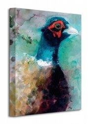Male Pheasant - Obraz na płótnie
