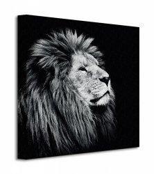 Obraz do salonu - Majesty