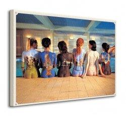 Pink Floyd (Back Catalogue) - Obraz na płótnie