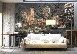 Fototapeta do salonu - Central Park - 315x232cm