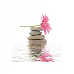 Kamienie zen i kwiaty - reprodukcja