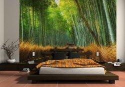 Fototapeta do sypialni  - Las Bambusowy - 315x232 CM