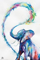 Kolorowy Słoń - plakat