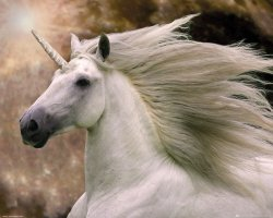Unicorn - plakat