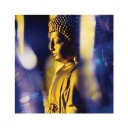 Niebieski Budda - reprodukcja