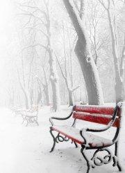 Fototapeta ścienna - Czerwona ławka w śniegu - 183x254 cm