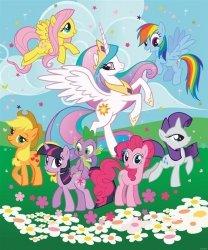 Fototapeta dla dzieci - My Little Pony - 244x201cm