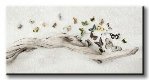 Obraz na płótnie - Motyle - Drift of Butterflies - 30x60 cm