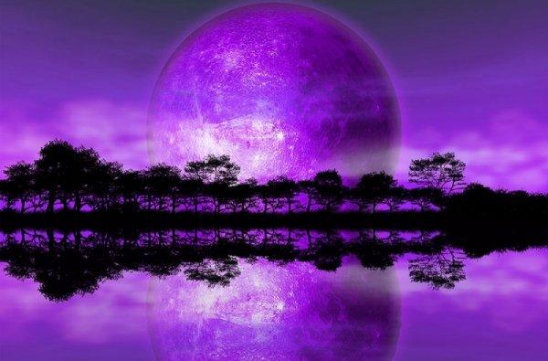 Fototapeta ścienna - Rising of The Moon - 175x115 cm
