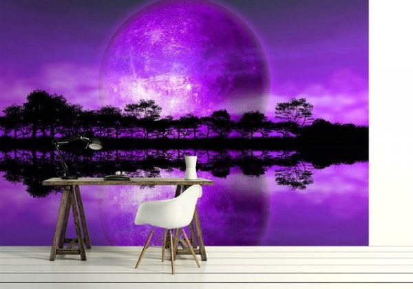 Fototapeta na ścianę - Rising of The Moon - 366x254 cm
