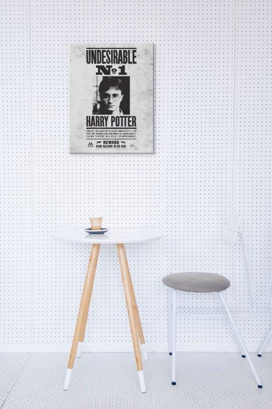 Obraz do sypialni - Harry Potter (Undesirable No.1)