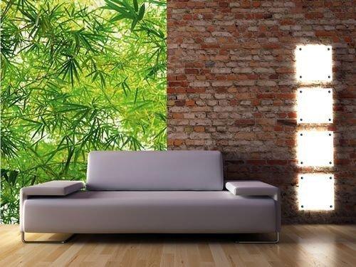 Fototapeta na ścianę  Bambus - 183x254 cm - sklep