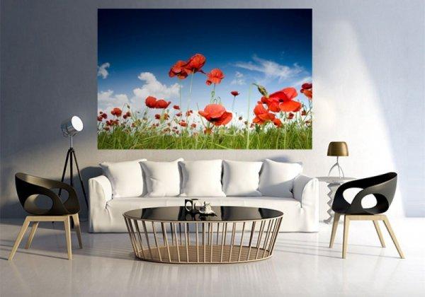 Fototapeta na ścianę - Pole maków - 75x115 cm