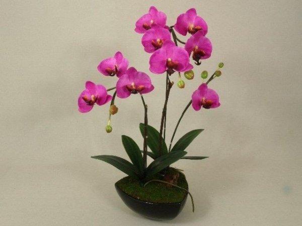 Sztuczny storczyk - Orchidea - W doniczce - 40x62cm - Amarantowy - decoart24.pl