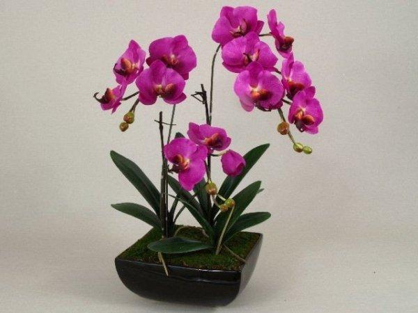 Sztuczny storczyk - Orchidea - W doniczce - 46x66cm