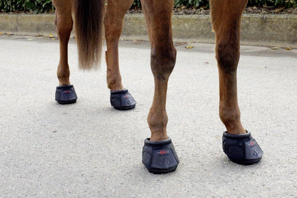 Buty Dla Konia