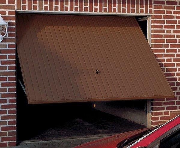 Brama uchylna N 80, 2750 x 2000, Wzór 905 z drzwiami, do wypełnienia