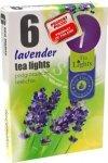 PODGRZEWACZ 6 SZTUK TEA LIGHT Lavender