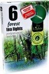 PODGRZEWACZ 6 SZTUK TEA LIGHT Forest