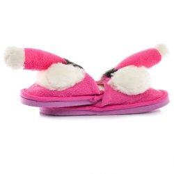 Pantofle peniski