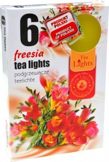 PODGRZEWACZ 6 SZTUK TEA LIGHT FREESIA