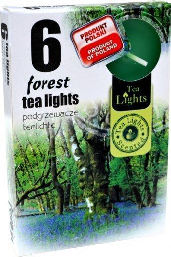 """PODGRZEWACZ 6 SZTUK TEA LIGHT """"Forest"""""""