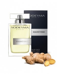 YODEYMA Magnetisme - The Scent for Him (Hugo Boss)